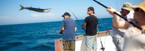 Edible-Fishing-191web
