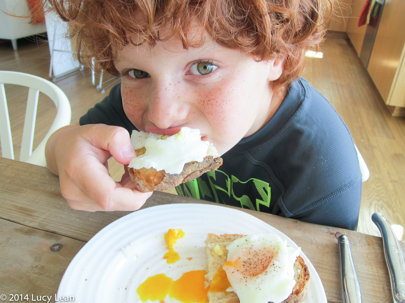 remy enjoys his poached eggs on toast