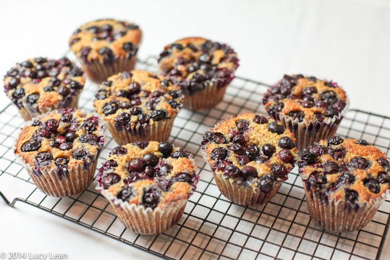 blueberrymuffin (1 of 1)-5