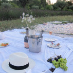 Provence_LucyLean (1 of 1)-22