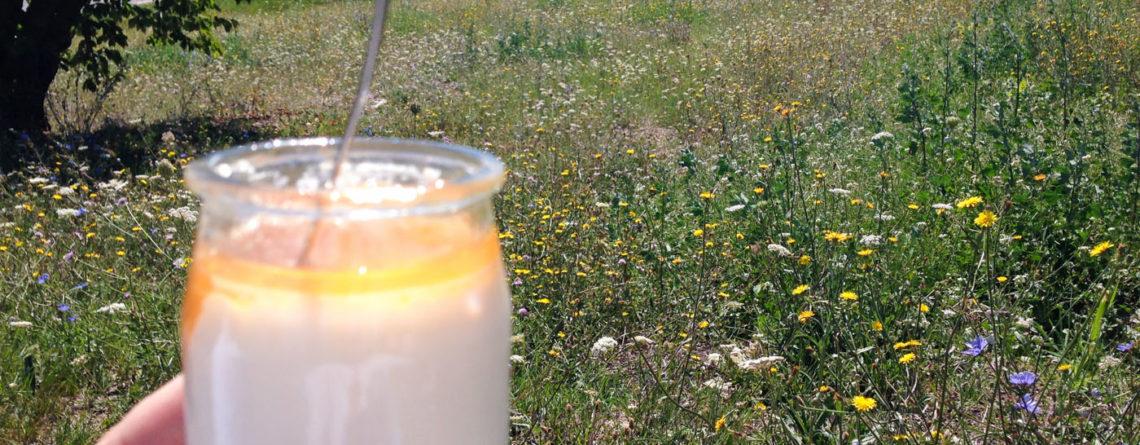 Yogurt – Provence in a Glass Jar