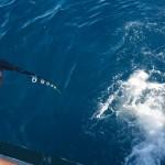 meeno-LUCY-FISHING-_H1A3804_o