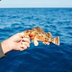 meeno-LUCY-FISHING-_H1A3819_o