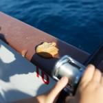 meeno-LUCY-FISHING-_H1A4101_o