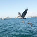 meeno-LUCY-FISHING-_H1A4255_o