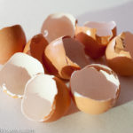 egg shells post chocolate Mousse
